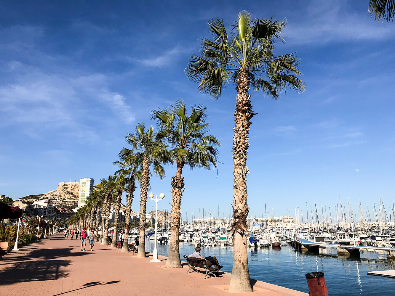 Hafenpromenade von Alicante