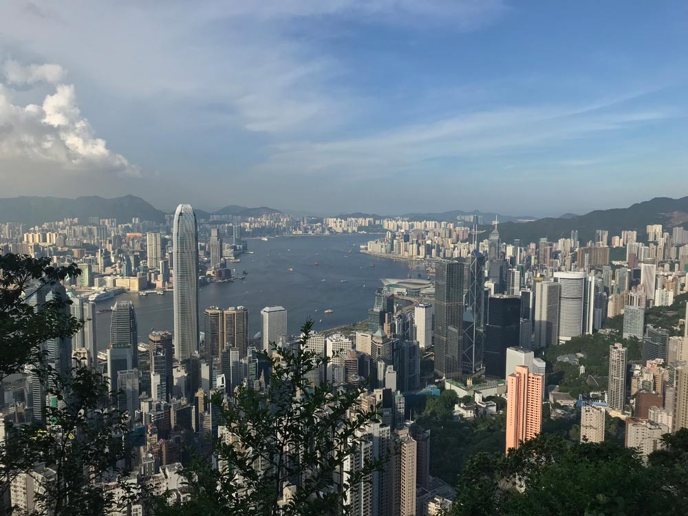 In Hong Kong isst man Hunde und Katzen – stimmt das? Mein Auslandspraktikum in China