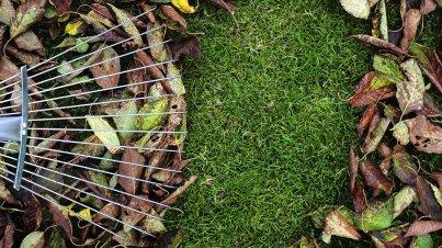 garten_im_oktober_titelbild