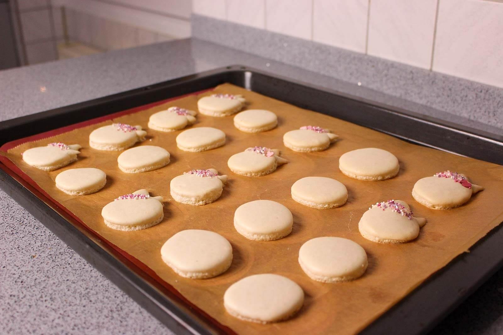 Fertig gepackene Macarons auf Backblech.