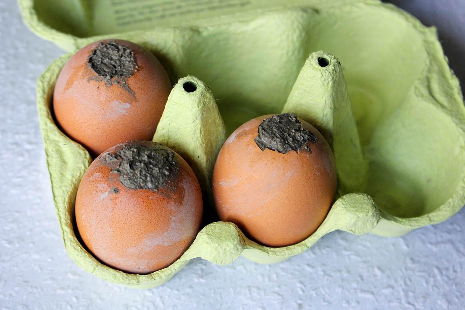 Beton-Eier trocknen lassen