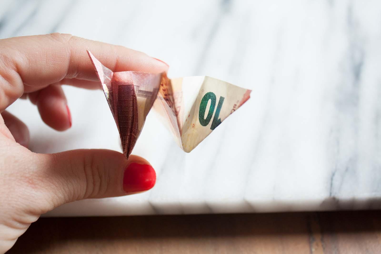 Geldscheine falten: Schweinchen - W-Faltung andere Seite