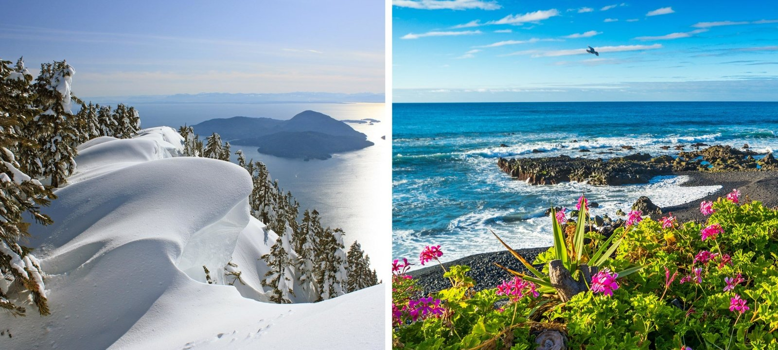 Schnee oder Meer?